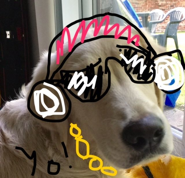 Coops Rap Dog!! By Meira
