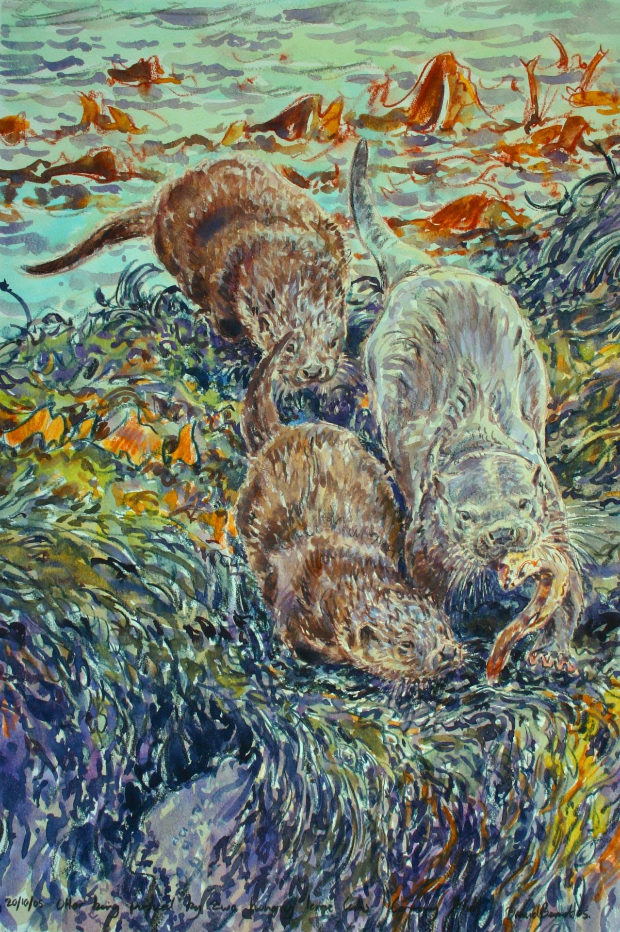 Begging Otter Cubs, Mull