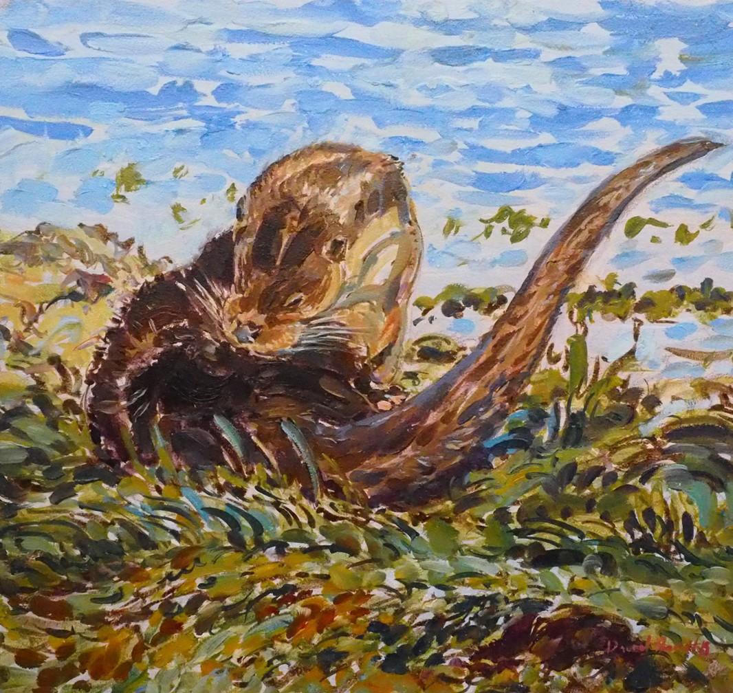 Otter Grooming, Mull