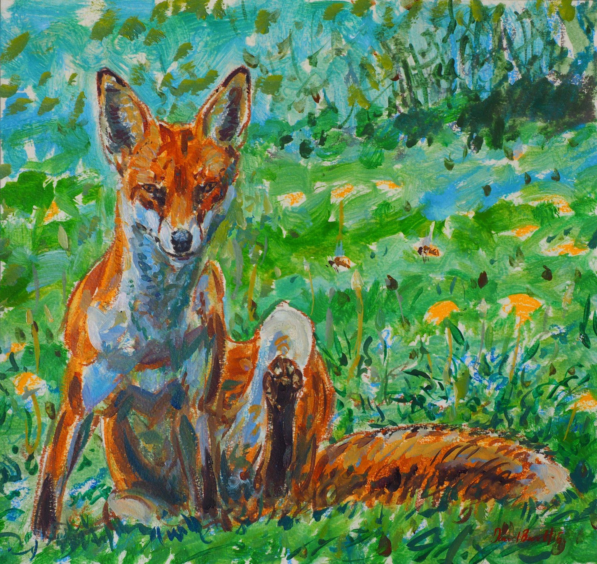 Fox Scratch