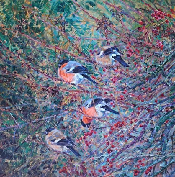 Bullfinches in Hawthorn