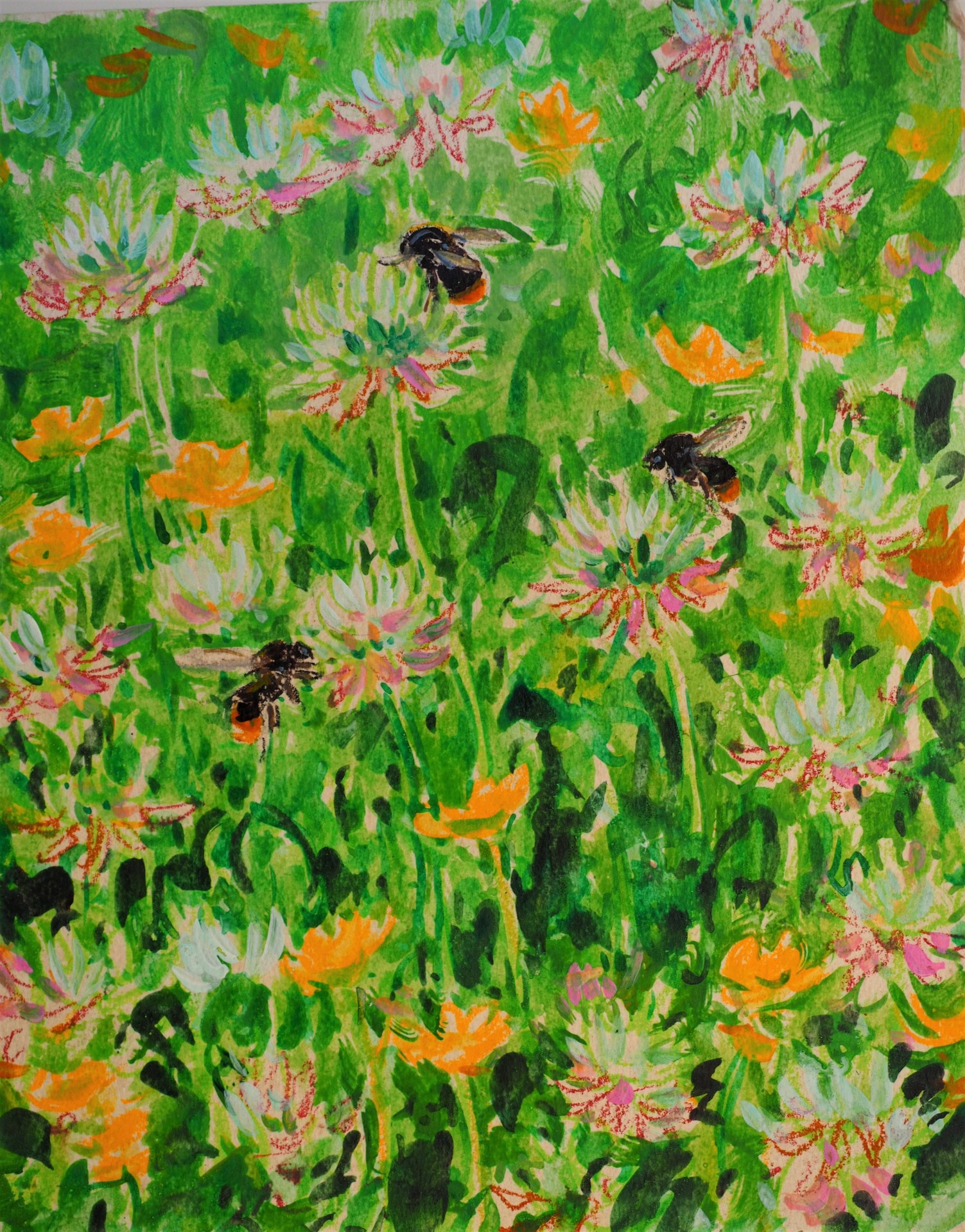 Bumble Bees and Clover