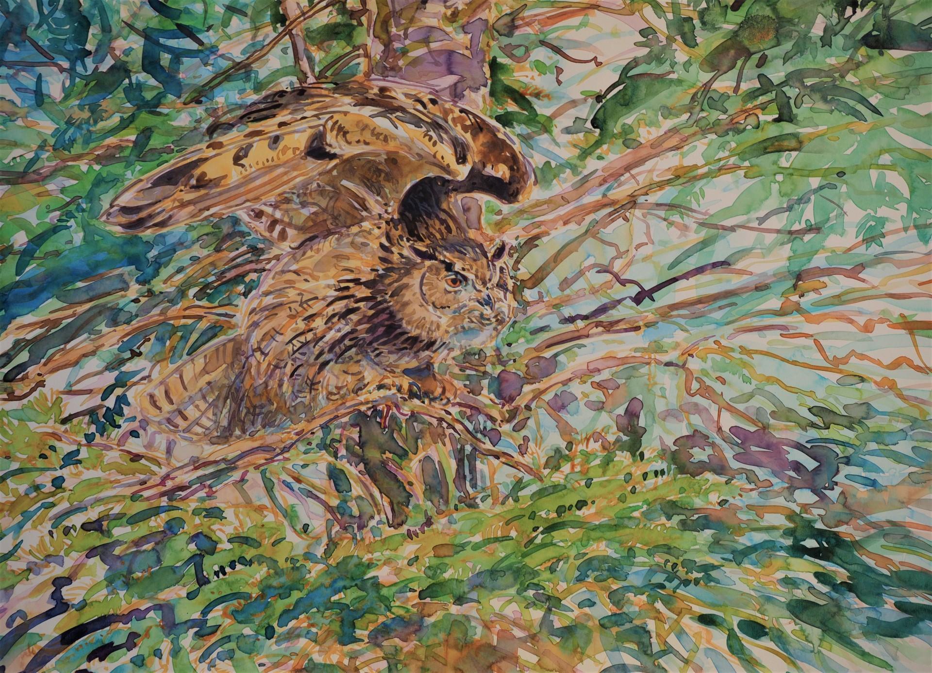 Eagle Owl Wing Stretch