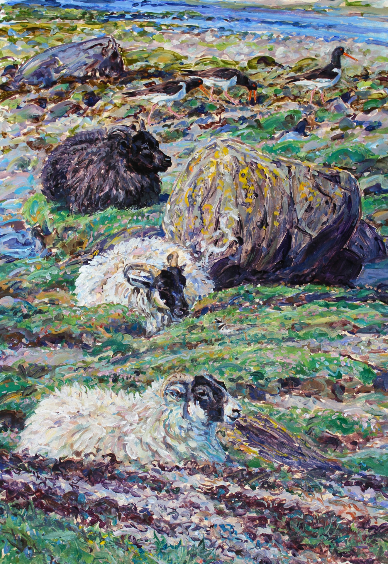 Shore sheep and Waders, Mull