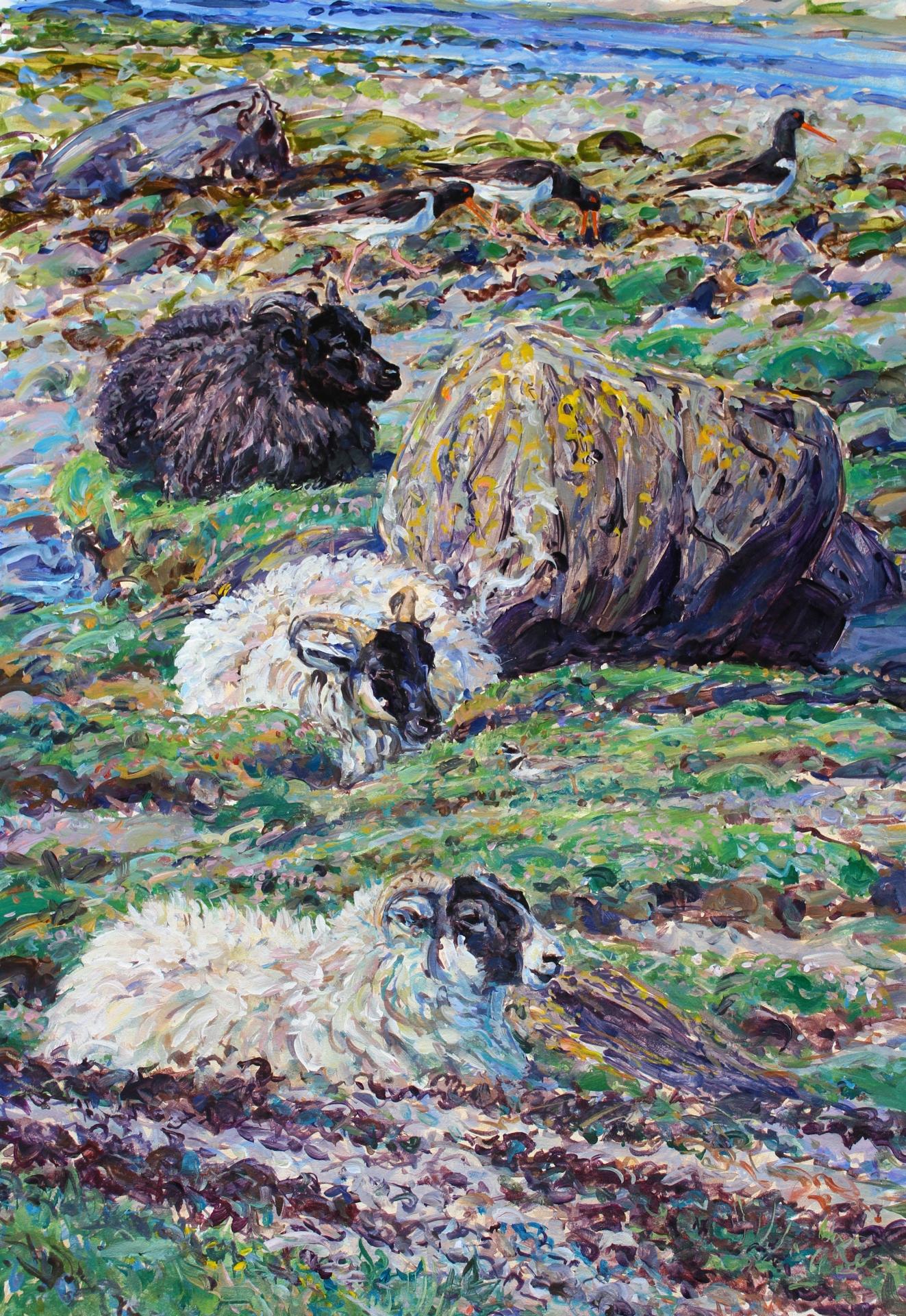 Shore sheep and Waders, Mull