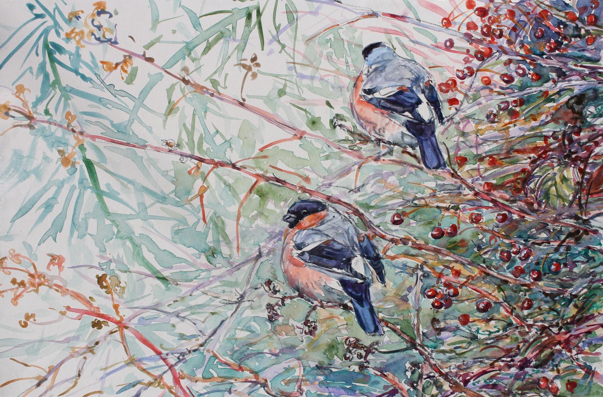 Bullfinchs and Hawthorne