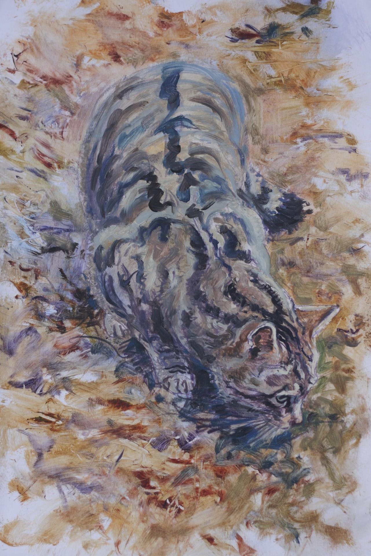 Crouched Scottish Wild Cat