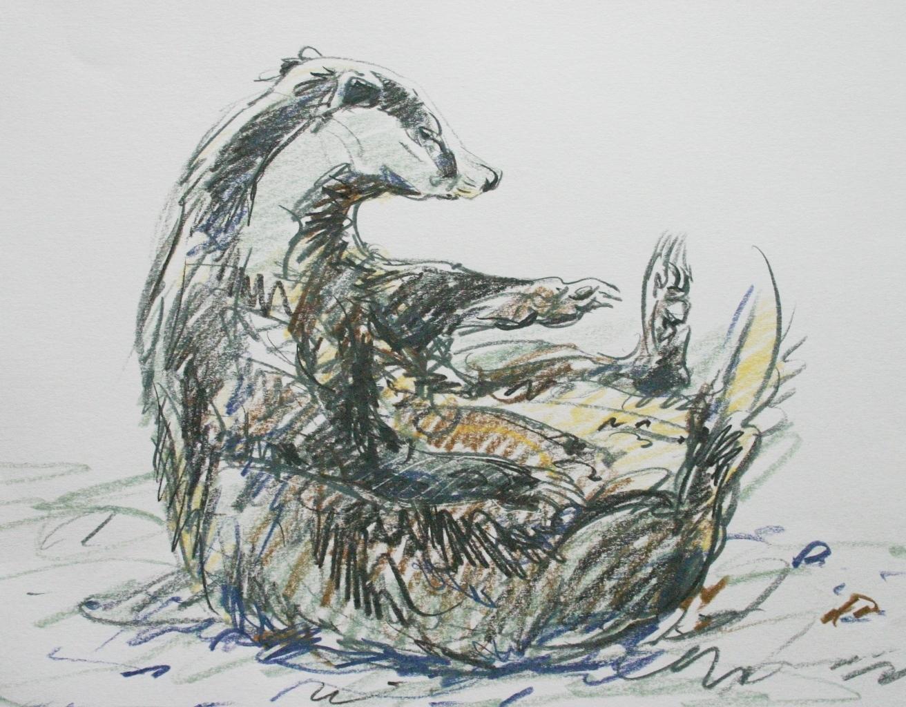 Badger scratch
