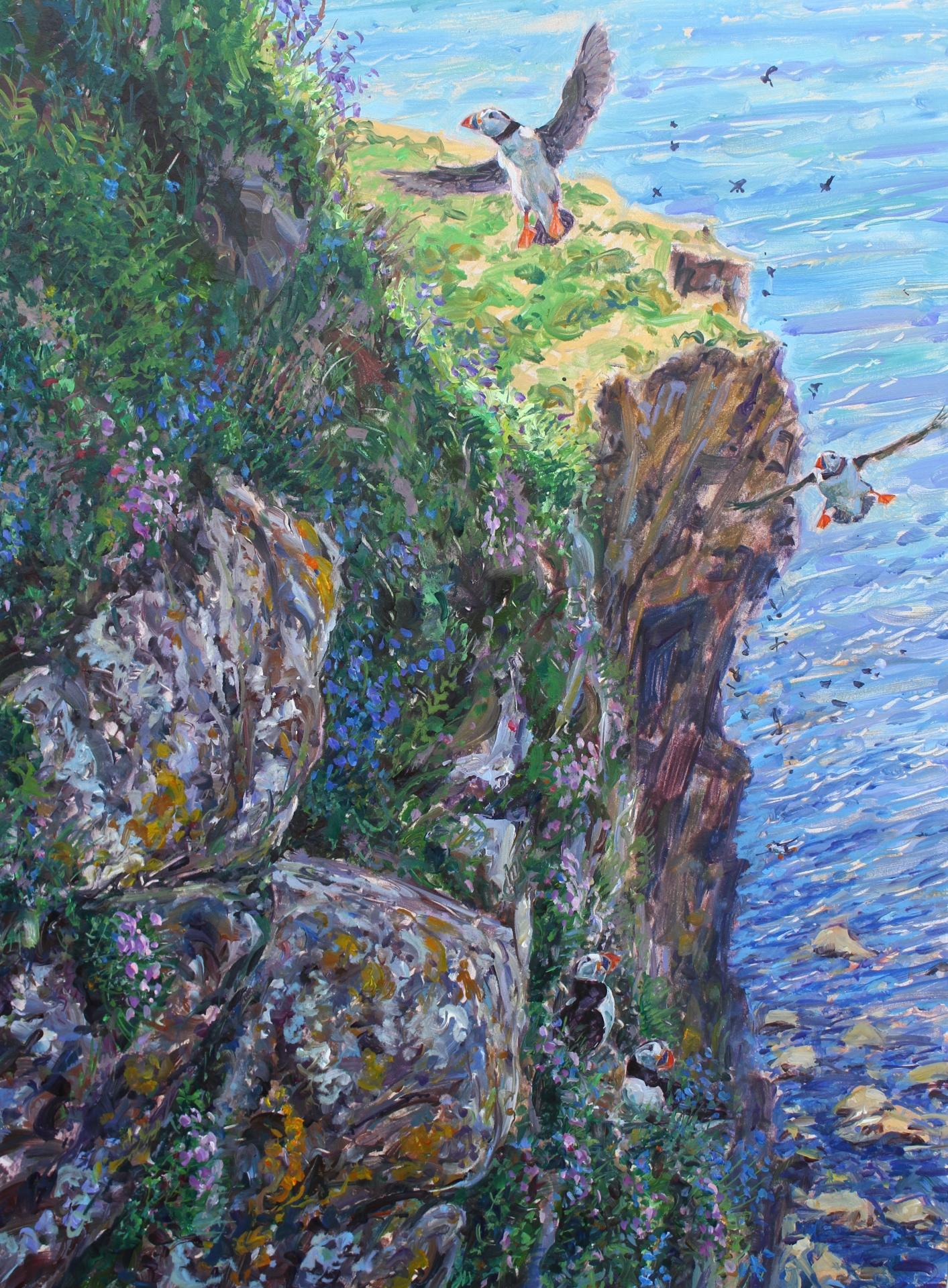 Puffins, Trehnish Isles
