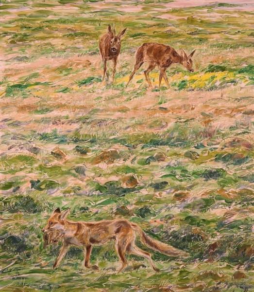 Rabbit, Fox And Roe Deer, Caeverlock