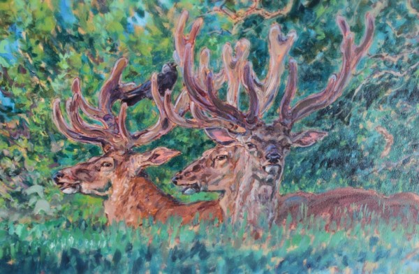 Velvet Red Stags and Jackdaw