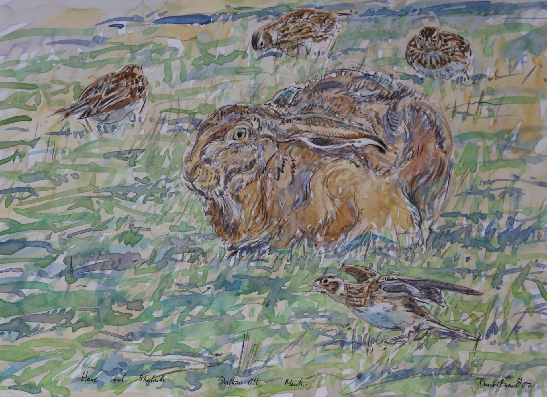 Hare and Skyelarks