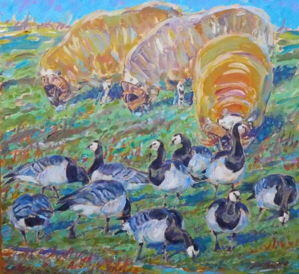 Rams and Barnacle Geese