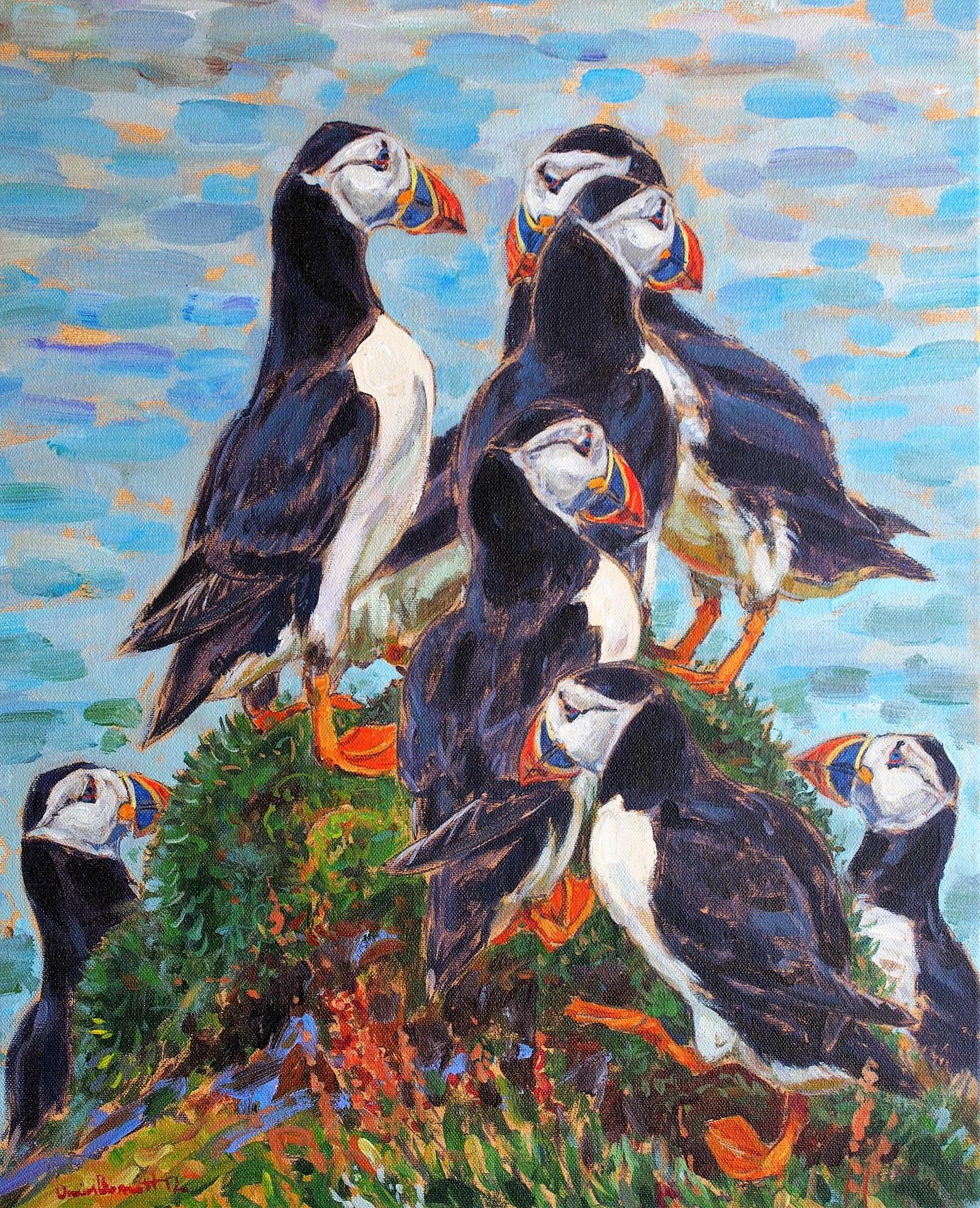 Puffin Knoll, Treshnish Isles