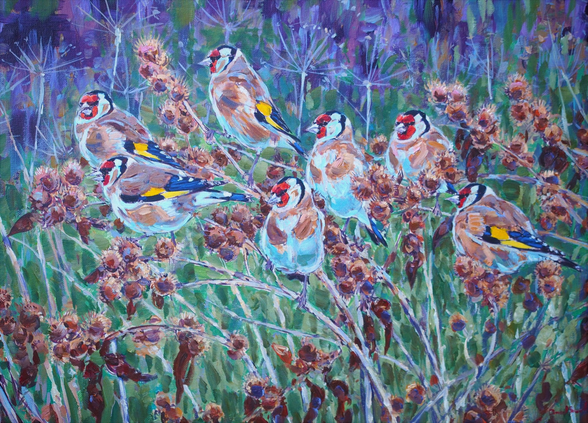 Goldfinches on Burdock
