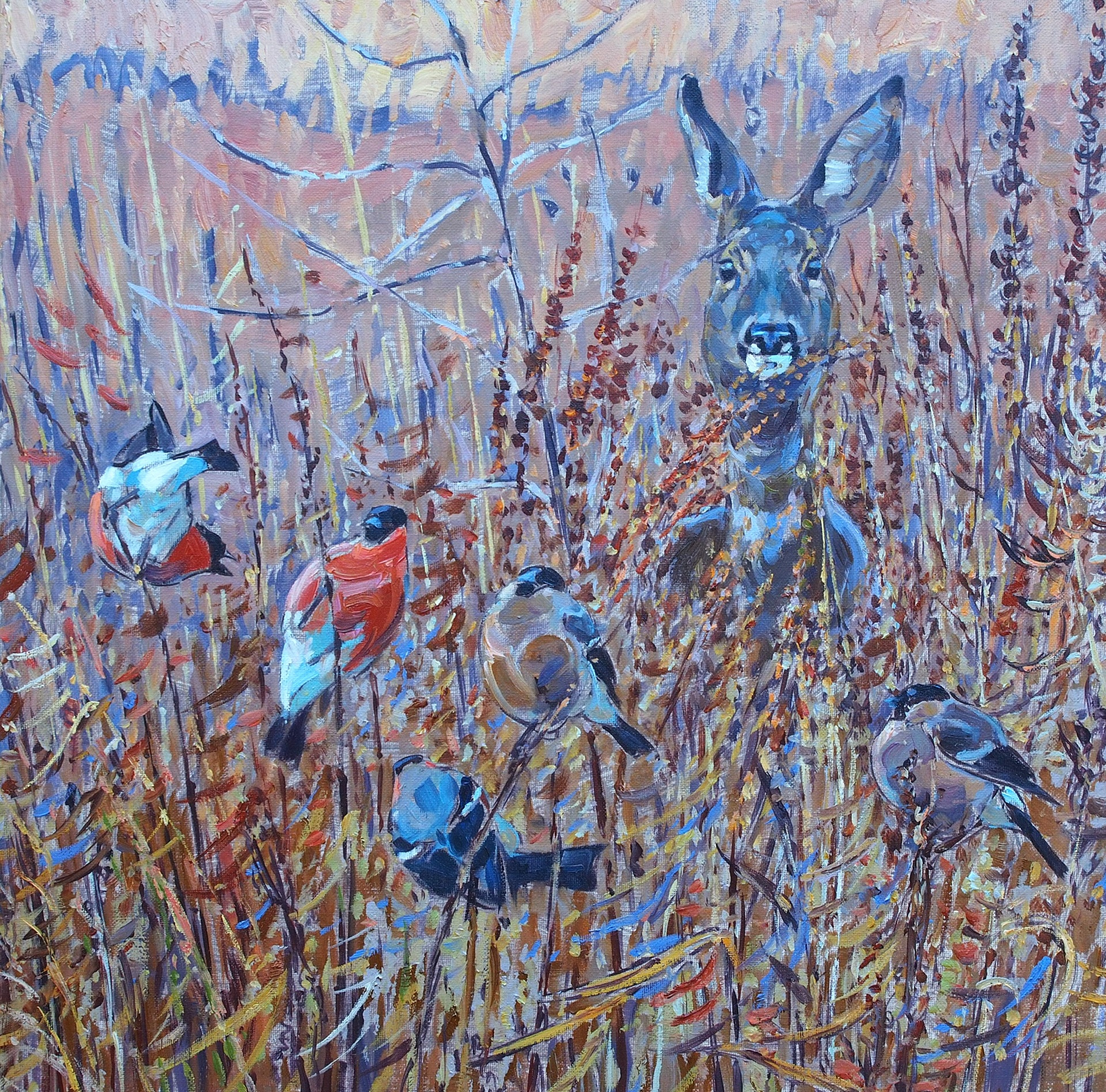 Roe Deer and Bullfinches
