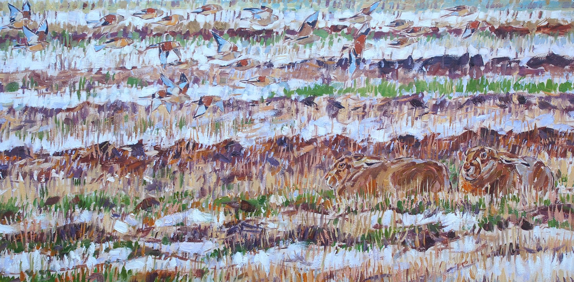 Linnets and Hares in Snow Rutted Field
