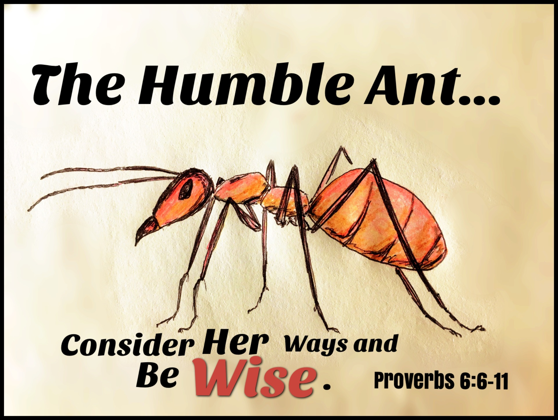The Humble Ant: a Family Devotional!