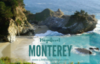 Magnificent Monterey