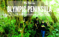 The Diverse Olympic Peninsula