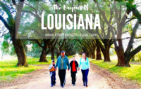 The Bayous of Louisiana