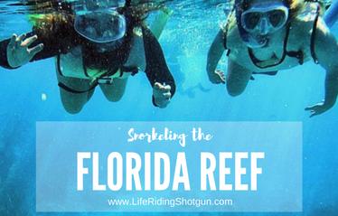 Snorkeling the Florida Reef