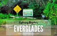Exploring Florida's Everglades