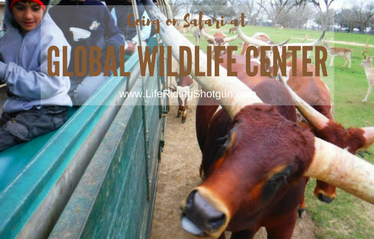 Global Wildlife Center Safari
