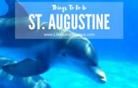 2 Days in St. Augustine