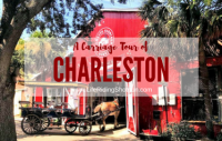 A Carriage Tour of Charleston