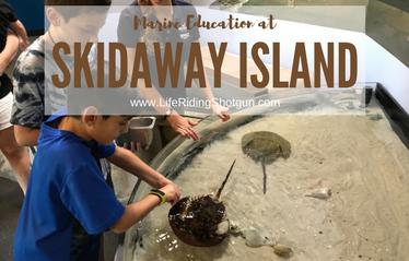 Skidaway Island