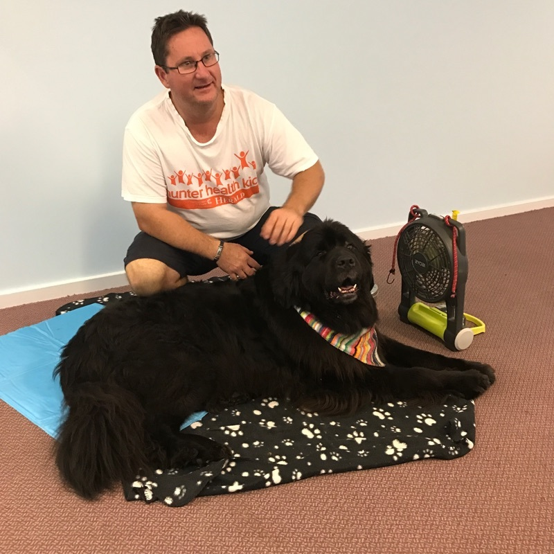Pets Therapy Dog