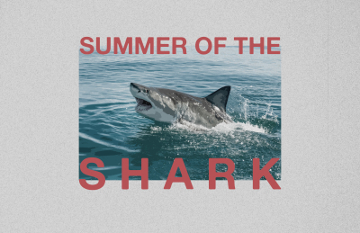 """""""Summer of the Shark"""" Documentary Available to Stream Now"""