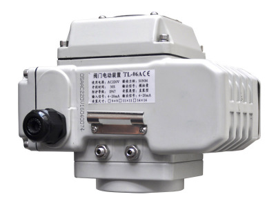 TL-06-10 series electric actuator