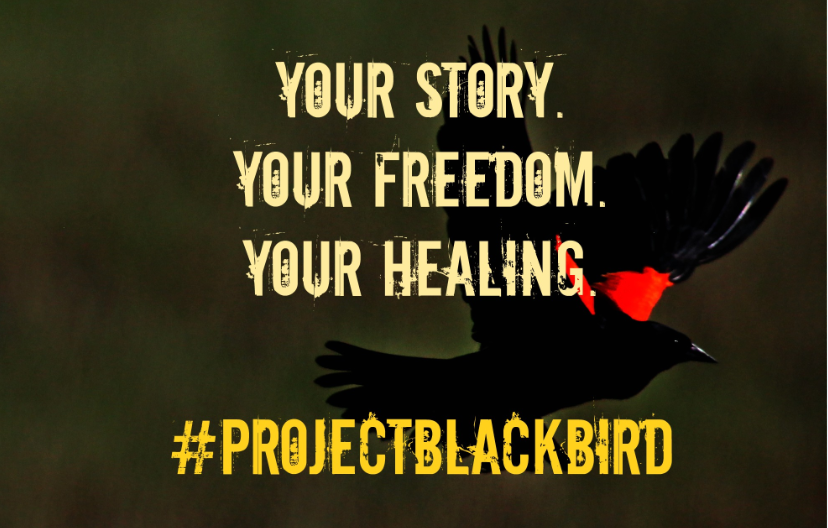 #ProjectBlackBird: Your Story. Your Healing- Group1