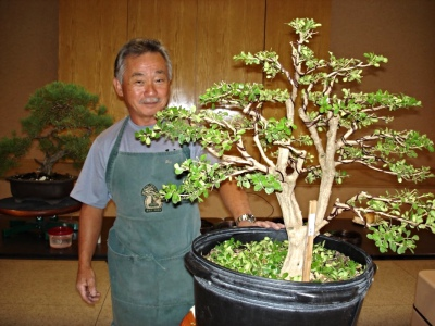 Master Bonsai Instruction