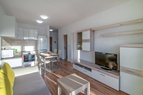 Modern apartment in Buna Ziua