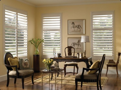 shutters, painted shutters, hidden tilt rods