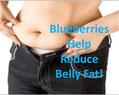 How to: Get Rid of BELLY FAT & Fight Cholesterol!