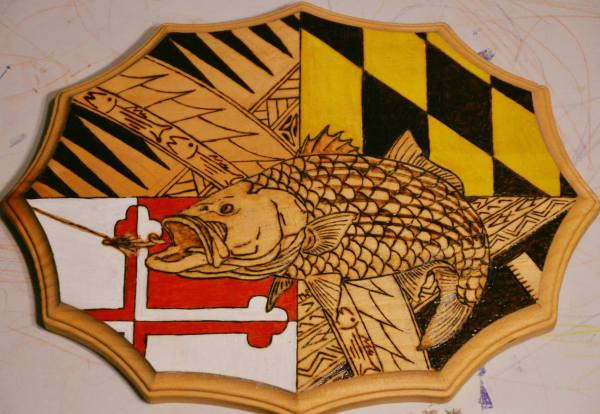 Maryland Striped Bass