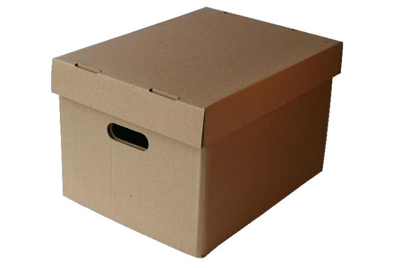 Caja X-300