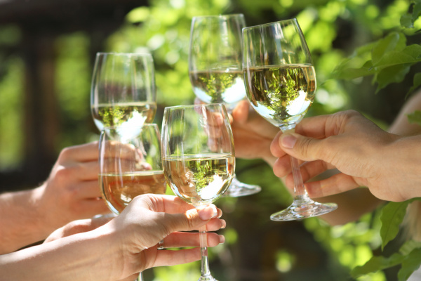 Cheers to wine tasting