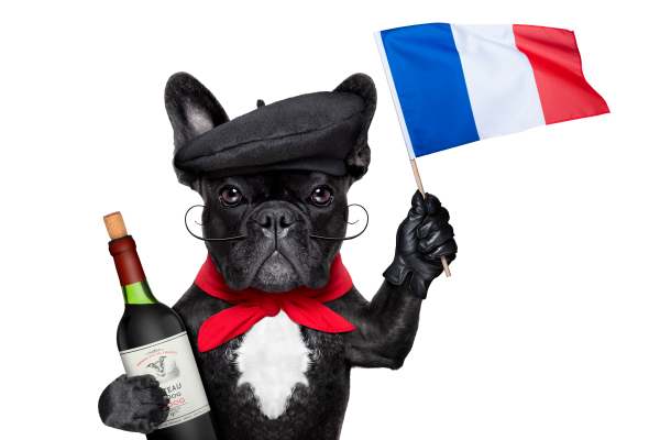 French dog wine tasting