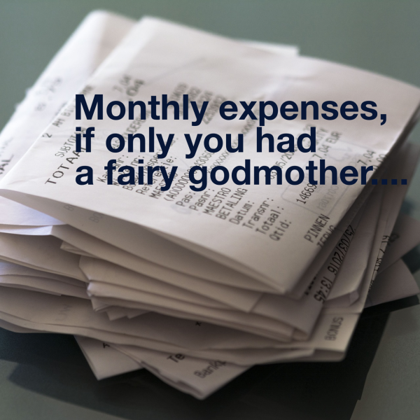 Do you have a fairy godmother to sort your expenses?