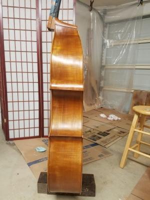 Varnish process on ribs. Bass #1