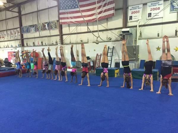 National Gymnastics Day 2016!