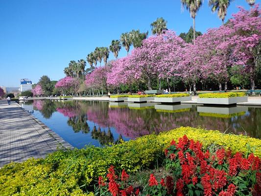 Parque Farroupilha Porto Alegre