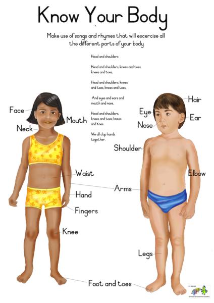 Educational Poster