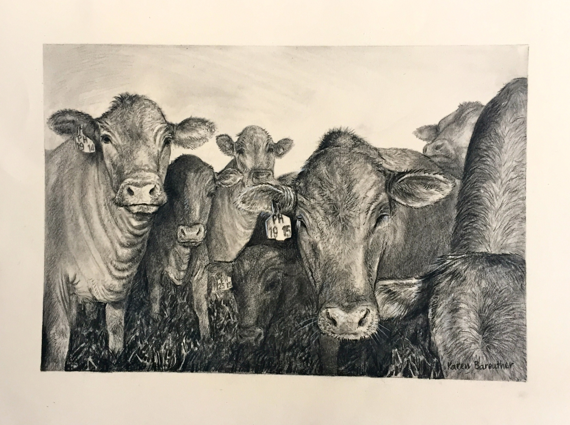 Cows, mixed media