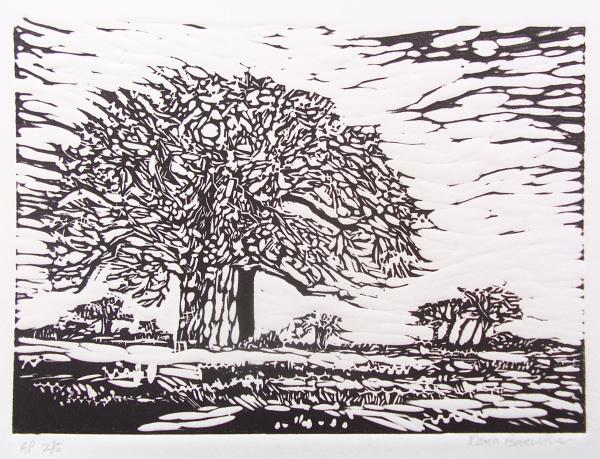 Baobab, linocut